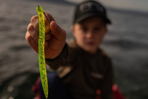 Soft-Plastic-Lure-How-to-Choose-the-Best-Soft-Bait-wacky-worm-tailored-tackle-3