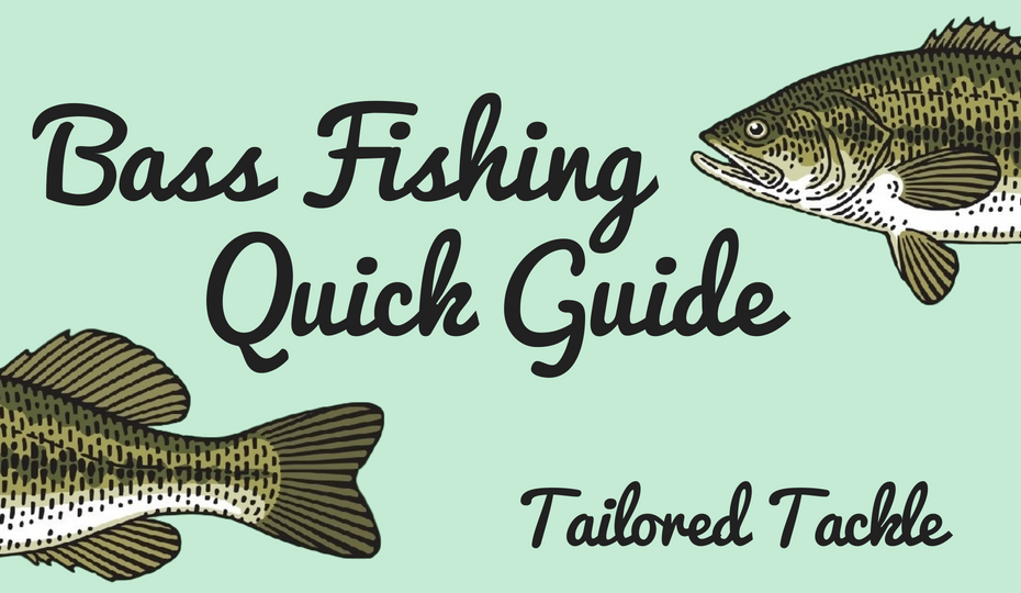 bass fishing pdf how to fish beginner tailored tackle