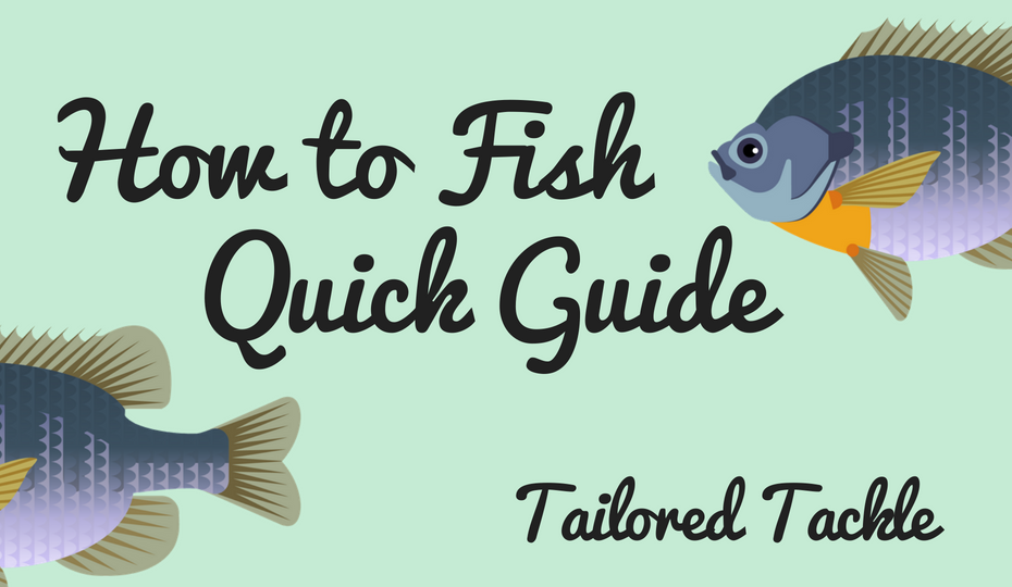 learn how to fish pdf fishing beginner guide