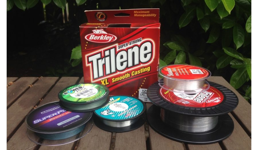 Best Fishing Line for Beginners