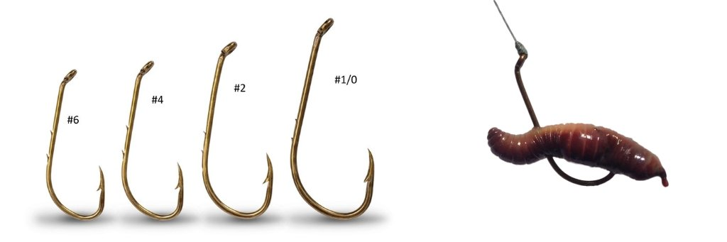 baitholder fishing hook sizes worm