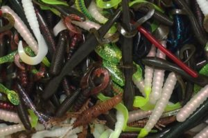 Soft Plastic Lure Bass Fishing Bait Tailored Tackle