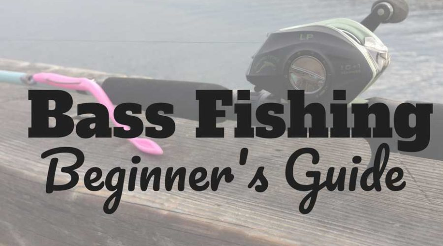 How to Fish for Bass – Beginner Bass Fishing Guide