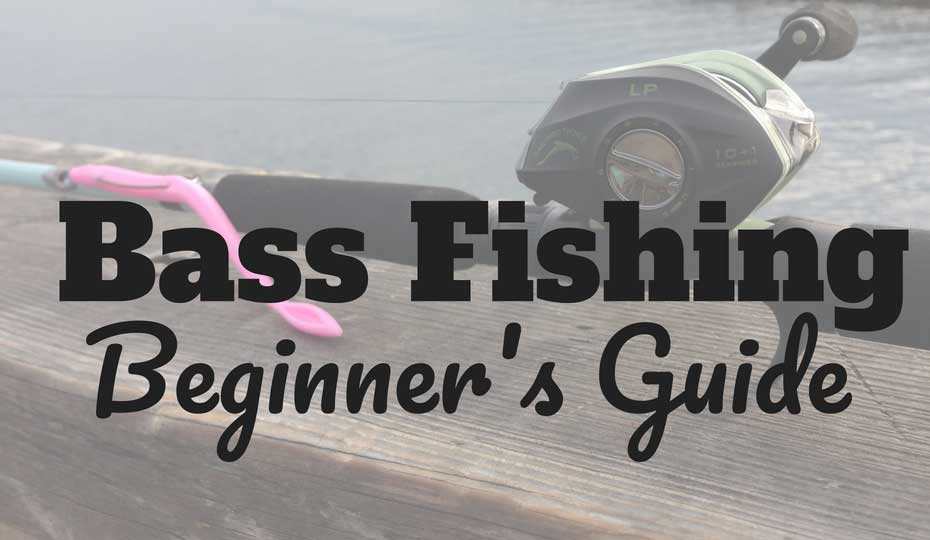 How to Fish for Bass Beginner Bass Fishing Tailored Tackle