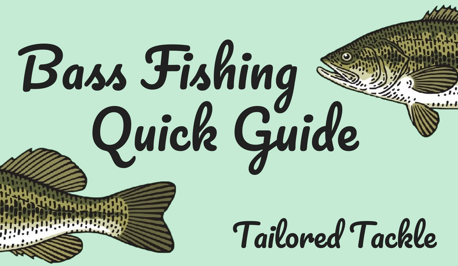 bass fishing pdf download how to catch bass
