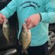 Crappies on Bald Eagle Lake with Freshwater Fishing Kit