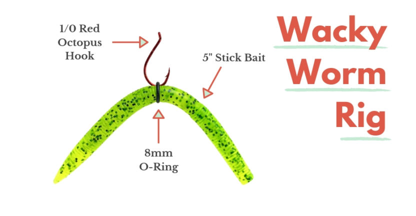 Wacky Worm Rig for Tantalizing Largemouth Bass Everywhere