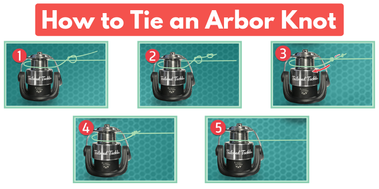 How to Tie an Arbor Knot Fishing Reel Tailored Tackle