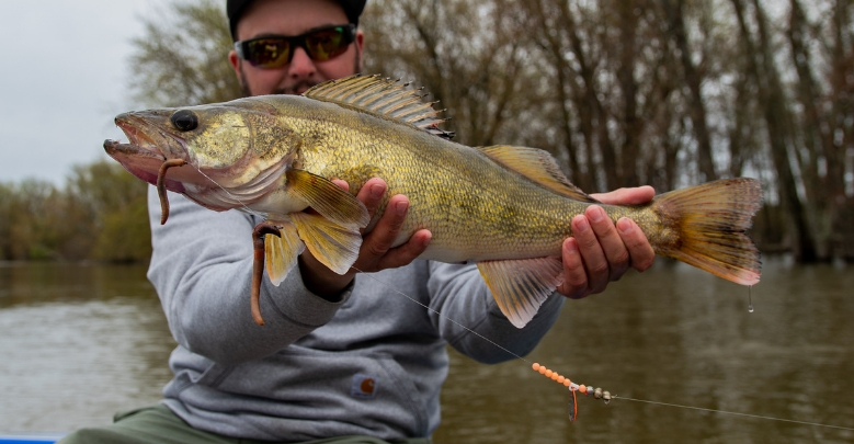 7 Walleye Fishing Tips Asked and Answered by Expert Anglers