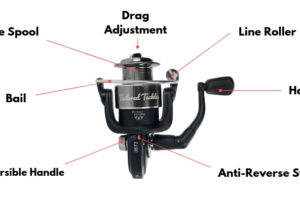 How to Use a Spinning Reel Learn to Spool Cast Service Tailored Tackle