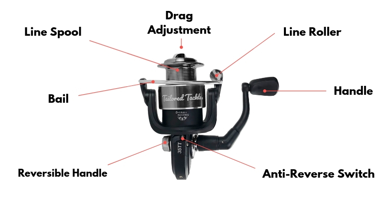 How to Use a Spinning Reel: Learn to Spool, Cast and Service a Reel
