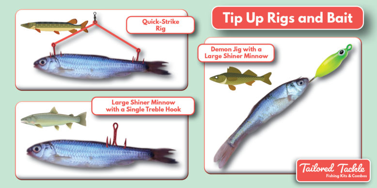 Ice Fishing Rigs for Pike Lake Trout Walleye Tip Up Tailored Tackle