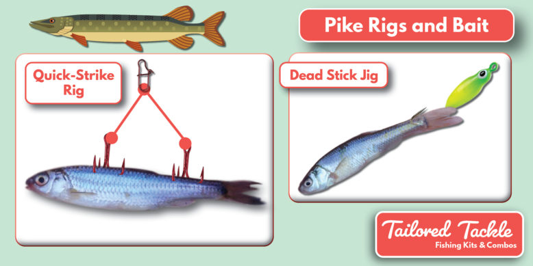 Ice Fishing for Pike Bait Rigs Tailored Tackle 1