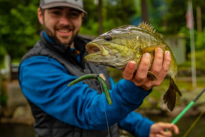 Smallmouth Bass Fishing For Beginners How to Fish for Smallmouth 2