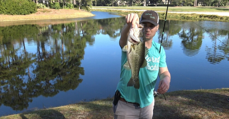 How to Fish a Texas Rig Largemouth Bass Tailored Tackle 1