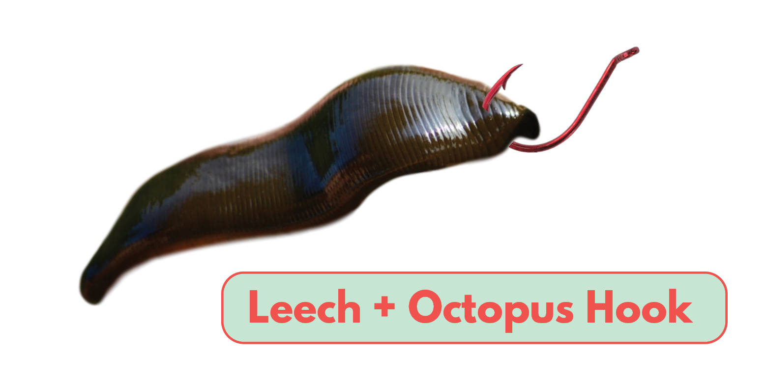 How to Bait a Leech Octopus Hook Tailored Tackle