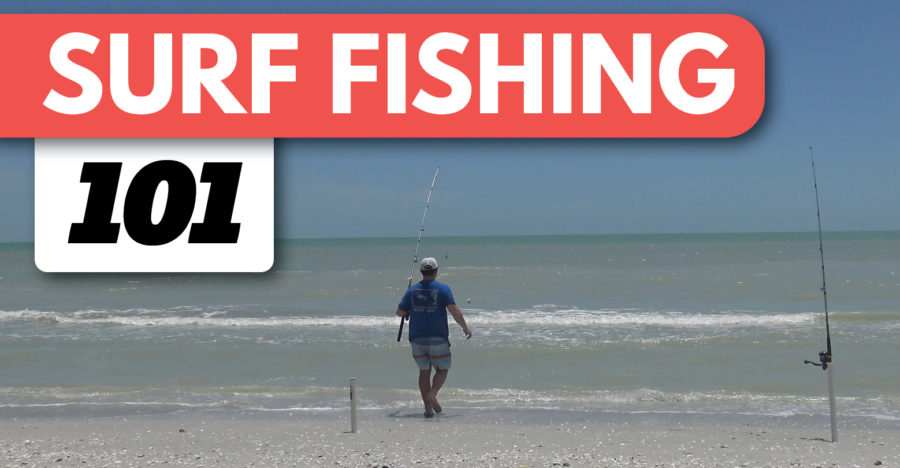 Surf Fishing For Beginners: Ultimate Guide on How to Surf Fish