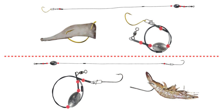 Ready Rig Saltwater Squid Shrimp Tailored Tackle 1