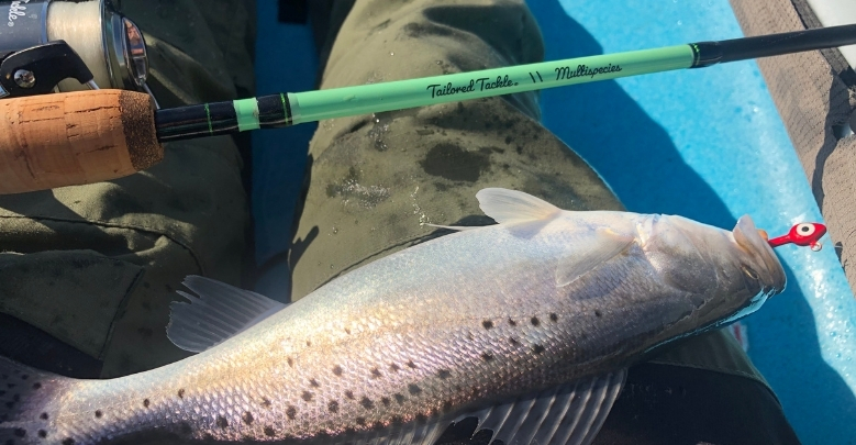 How to Surf Fish for Spotted Sea Trout