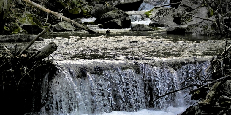 Fishing Rivers Streams for Brookies Tailored Tackle