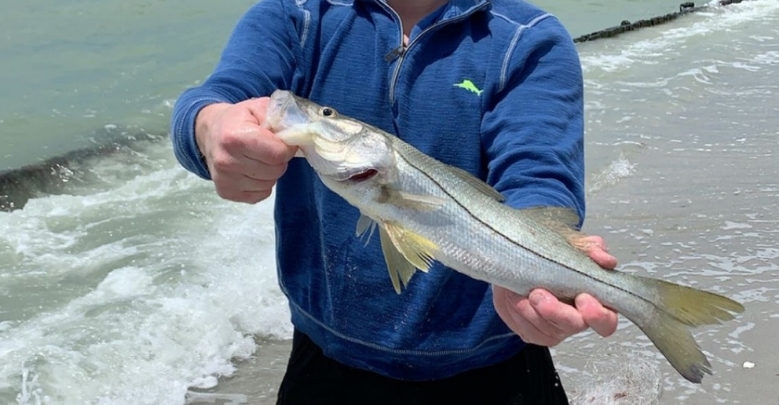 Snook Fishing in the Surf for Beginners Tailored Tackle